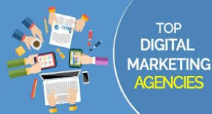Digital Marketing Company do